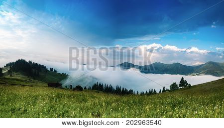 Carpathian mountains summer landscape with blue sky and clouds, natural summer travel background