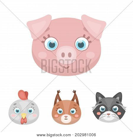 Protein, raccoon, chicken, pig. Animal's muzzle set collection icons in cartoon style vector symbol stock illustration .