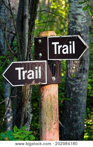 A Hiking Trail Direction Sign In The Forest