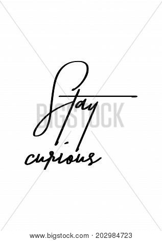 Hand drawn lettering. Ink illustration. Modern brush calligraphy. Isolated on white background. Stay curious.