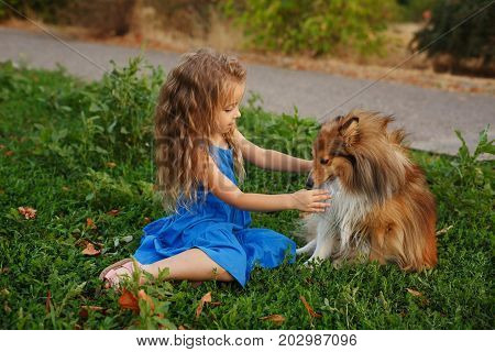 Cute little girl with a dog Sheltie breed. Best friends forever. Dog devotion. Girl stroking a pet walk in the park