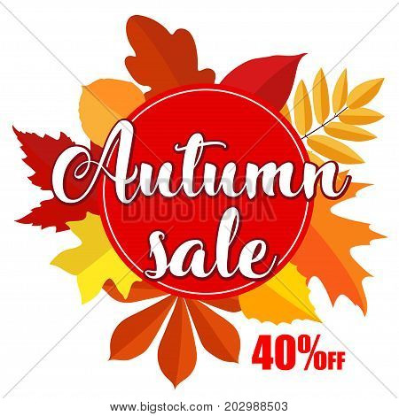 Autumn sale banner with autumn leaves on white background. Vector illustration with colorful autumn leaves. Bright banner for autumn sale with colorful fall leaves. Autumn discount sale 40 off circle banner.