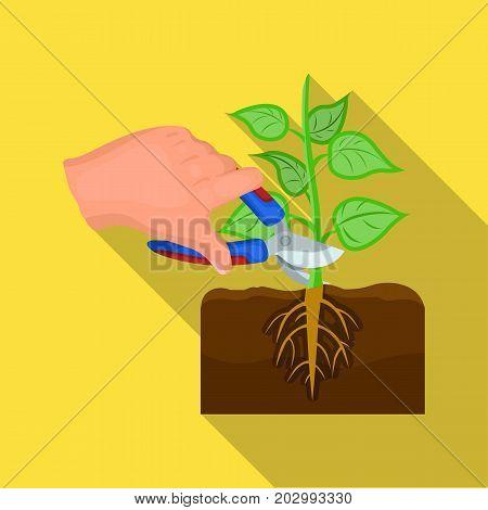 Plants, single icon in flat style .Plants, vector symbol stock illustration .