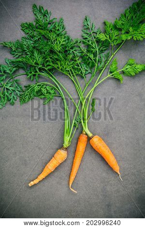 Fresh Carrots Bunch On Wooden Table. Raw Fresh Carrots With Tails. Fresh Organic Carrots With Leaves
