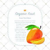 Colorful watercolor texture nature organic fruit memo frame mango poster