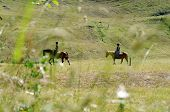 two anonymous horse riders in a field in the swiss alps poster
