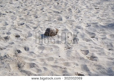 Abstract, Sand Texture Abstract Background, Sandy Beach For Background, Top View, Space For Your Tex