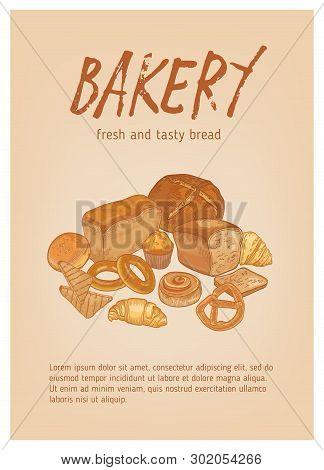 Flyer Or Poster Template With Different Types Of Fresh, Tasty Bread, Pastry Or Baked Products And Pl