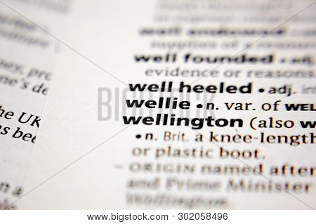 Word Or Phrase Wellie In A Dictionary.