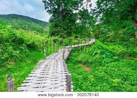 Bamboo Bridge Boon Ko Ku So Through A Rainforest Near Pai; Thailand