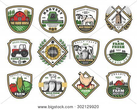 Farmhouse Agriculture And Cattle Farm Food Production Icons. Vector Cow Dairy Milk, Wheat Windmill A