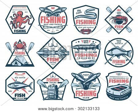 Fishing Outdoor Adventure Icons, Tuna, Trout And Eel Big Fish Catch Tournament. Vector Fisherman Sto
