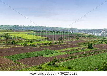 Aerial View Of Agricultural Green Fields Stock Photo