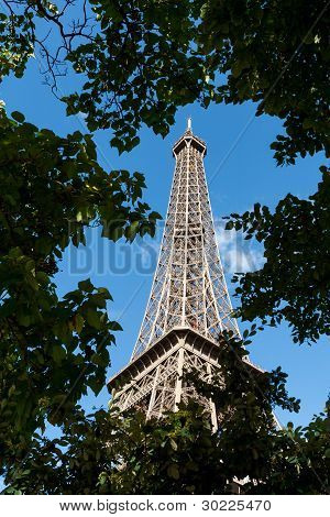 View Of Eiffel Tower Through Trees