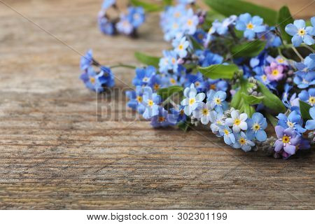 Beautiful Forget-me-not Flowers On Wooden Background, Space For Text