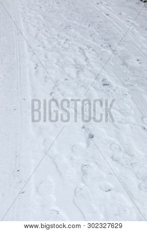Foot Prints Of Human Shoes On The White Snow