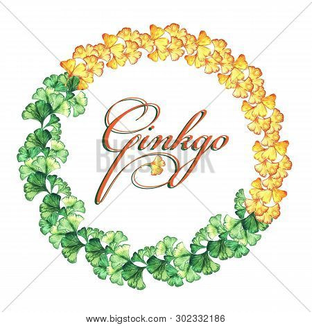 Round Frame Of Yellow And Green Leaves Of Ginkgo Biloba. Watercolor. Print, Invitation, Greeting Car