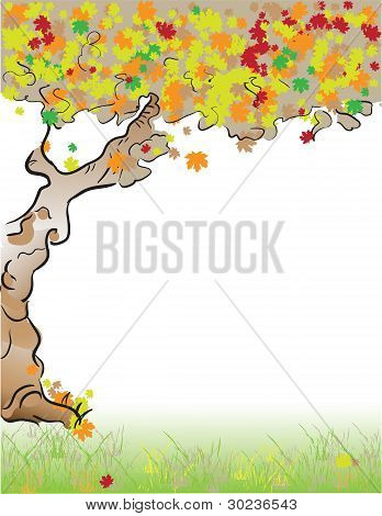 Format Letter Tree Fall