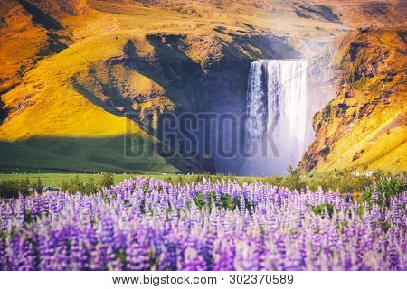 Amazing landscape with famous Skogafoss waterfall on Skoga river. Iceland, Europe