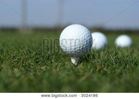 Golf Ball In Tall Green Grass