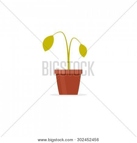Dead plant in pot. Clipart image isolated on white background