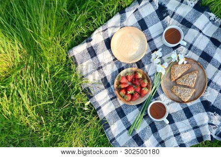 Picnic In The Park On The Green Grass With Berry, Cookies, Tea.  Picnic Blanket. Summer Holiday
