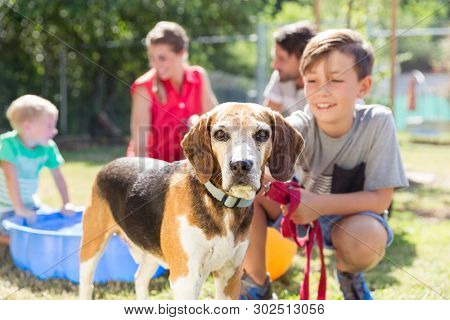 Young boy petting dog in animal shelter spending time with the pet