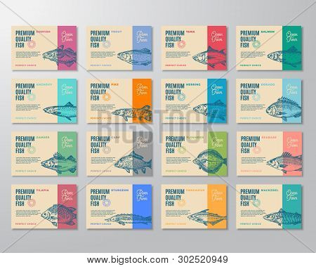 Sixteen Premium Quality Fish Labels Set. Abstract Vector Packaging Design Or Label. Modern Typograph