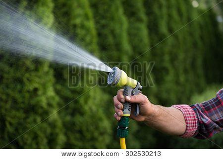 Gardener Holding Hand Hose Sprayer And Watering Plants In Garden