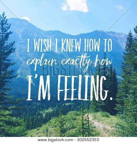 Quote - I wish I knew how to explain exactly how I am feeling