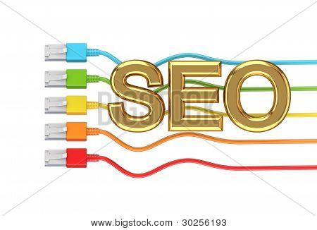 Colorful patchcords and golden word SEO.