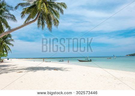 Beautiful beach landscape from Phangan island of Thailand. Palm trees over shallow sea water, idyllic beach scene. Summer holiday and vacation concept. Inspirational tropical beach.