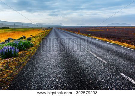 Typical Iceland landscape with road and mountains on background. Summer time