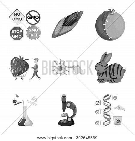 Vector Design Of Transgenic And Organic Icon. Collection Of Transgenic And Synthetic Vector Icon For