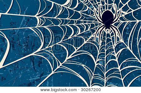 Spider Web Blue Background