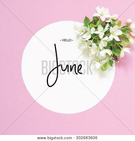 Inscription Hello June. Frame With Summer Fresh Flowers. Top View. - Image