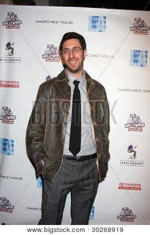 LOS ANGELES - FEB 19:  Dave Holstein arrives at the 2nd Annual Hollywood Rush at the Wilshire Ebell on February 19, 2012 in Los Angeles, CA.