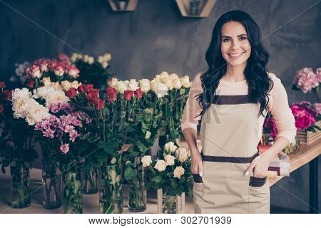 Close Up Photo Beautiful Adorable She Her Lady Many Roses Vases Retail Seller Assistant Employee Han