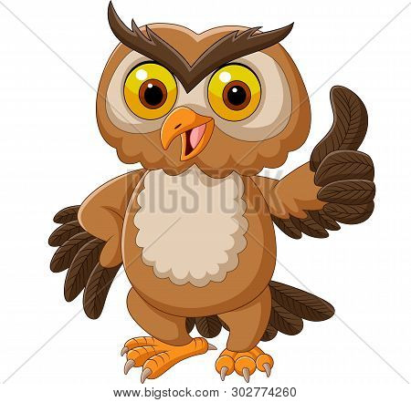 Cartoon Owl Giving Thumbs Up On White Background