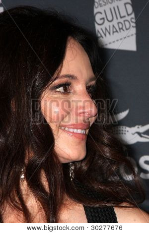 LOS ANGELES - FEB 21:  Madeleine Stowe arrives at the 14th Annual Costume Designers Guild Awards at the Beverly Hilton Hotel on February 21, 2012 in Beverly Hills, CA.