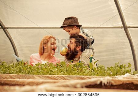 Seed Germinating. Seed Germinating Concept. Happy Family Watch On Seed Germinating. Seed Germinating