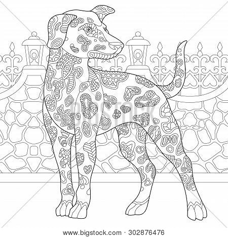 Coloring Page. Coloring Book. Anti Stress Colouring Picture With Dalmatian Dog. Freehand Sketch Draw