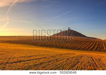 Hazmburk Castle And Apple Orchard Rows In Spring. Fruit Trees Over Bright Blue Sky. Apple Orchard Pa