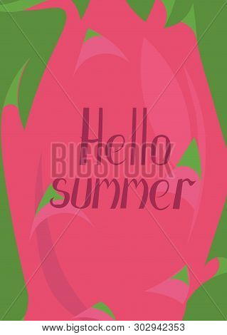 Hello Summer. Background Made Of Pitaya, Dragon Fruit. Vector Greeting Card, Poster, Invitation, Fly