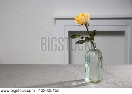 One Orange Rose Candlelight On Grey Tablecloth On The Table Next To White Wall. Copy Space.