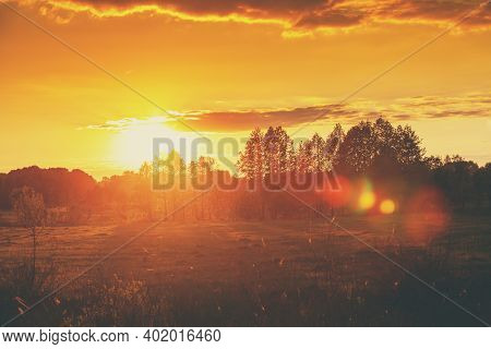 Rural Landscape In The Evening At Sunset. Field With Trees Against Evening Golden Sky. Sunset In The