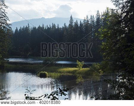 View Of Vrbicke Pleso, Forest Lake, Tarn With Reflection Of Forest Trees In Water Surface, Demanovsk