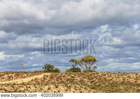 Desert landscape near Meia Praia beach in Lagos, Algarve, Portugal