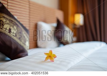 The Hotel Maid Cleans And Makes The Bed In The Hotel Room.