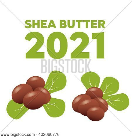 Shea Nuts With Shea Butter And Green Leaves.